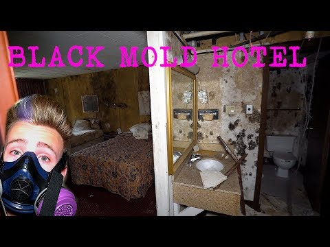 Abandoned Days INN hotel - Black Mold Infestation | Exploring With Josh