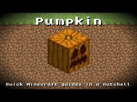 Minecraft - Pumpkin! Recipe, Item ID, Information! *Up to date!*