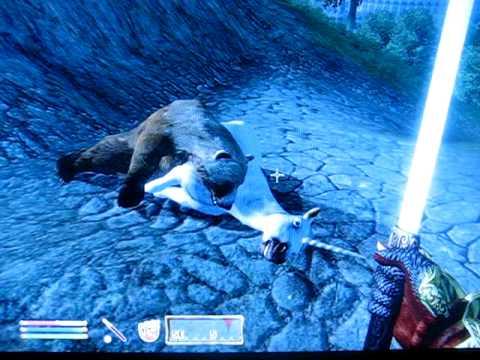 ES IV: Oblivion - A Bear Spoons a Unicorn
