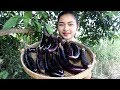 Awesome Cooking Fry Aubergine Eggplant With Pork Delicious Cook Recipe - Village Food Factory