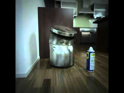 WD 40 and the Kitchen Bin
