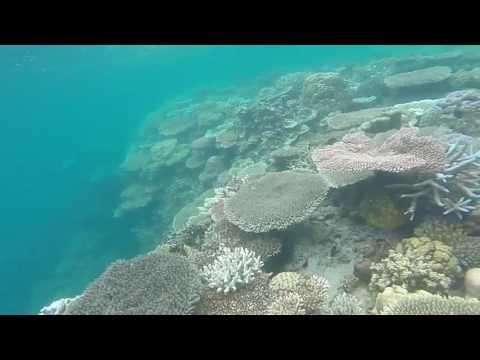 Apulit Island Palawan Aftermovie 2016