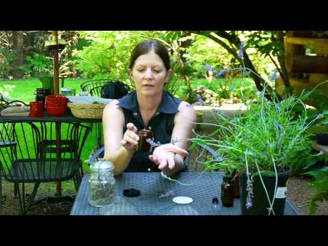 Harvesting & Using Edibles From Your Garden : How to Extract Lavender From a Plant
