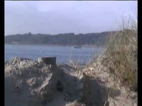Sand Dune and Brownsea Island March 2012