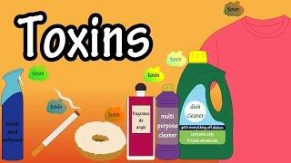 Toxins - Toxins In The Body - Toxins In Food