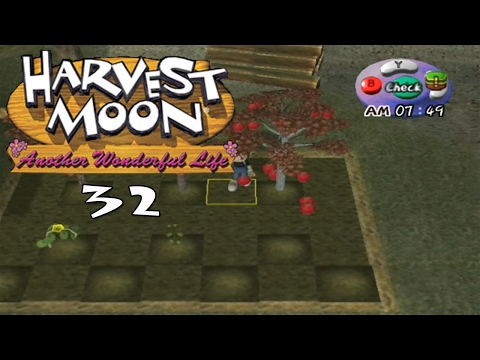 Let's Play Harvest Moon: Another Wonderful Life 32: Grapple
