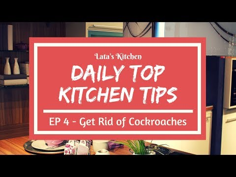 Daily Top Kitchen Tips - Episode 4 - How to Get Rid of Cockroaches in Home & Kitchen - Tip in Hindi