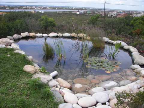 Fish Pond - Easy, qiuck and cheap. .wmv