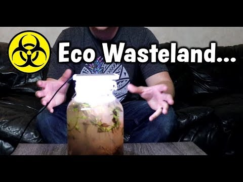 (SMELL WARNING) Opening My Failed Ecosphere...