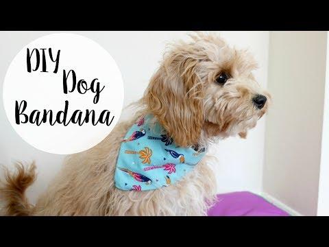 DIY Dog Bandana - No Sew