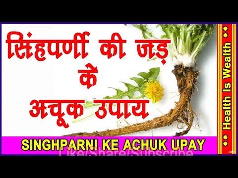 सिंघपर्णी की जड़ के उपाए - singh pardi ki jad के फायदे