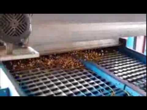 Hardy Farms: Peanut Process: Field Cleaning and Intial Sorting