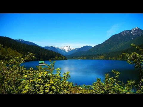 My Life in Vancouver [HD]
