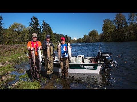 Clackamas River Steelhead