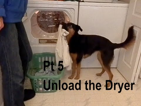 Unloading the Dryer (Laundry for Service Dogs) Part 5 incl Dog Bloopers!