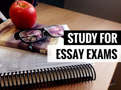 How to Study for an Essay Exam //  Extended Response Study Tips