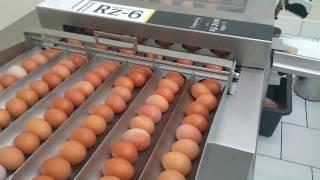 Egg breaker Rz6 + vacuum lifter VEL30