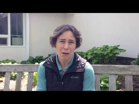 I Think My Horse Has Lyme Disease: Now What?