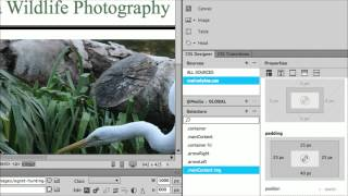 How to Add Padding to an Image in Dreamweaver