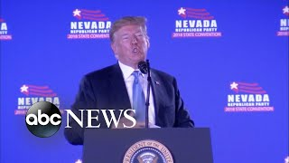 Trump blames Democrats for his administration