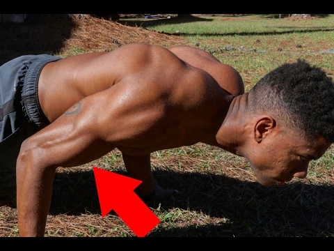 The Best Pushup Exercise for Your BICEPS!