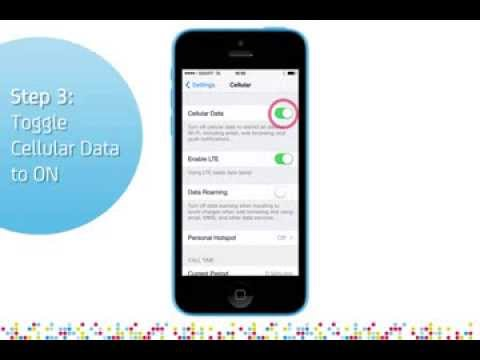 iPhone 5C: Turn on/off data services