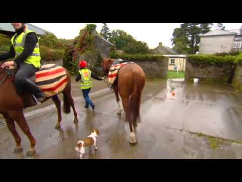 Budweiser Ireland: Dream Job 2015 | 'Live The Dream' TV3