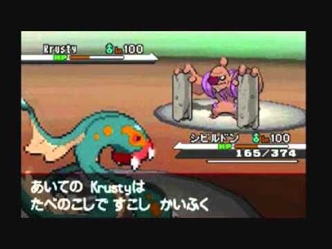 Pokemon Black White Wi-Fi Battle vs Gustavo Dream World