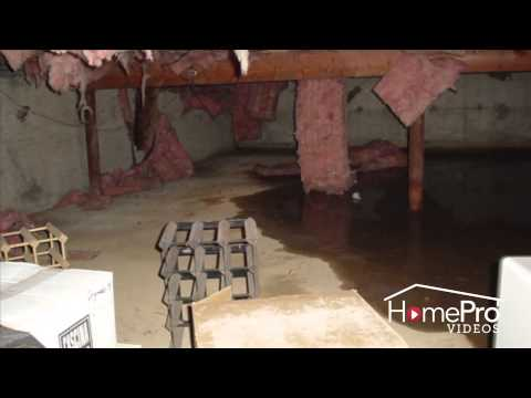 High Humidity in the Crawl Space: Causes & Solutions | HomePro | Frontier Basement Systems