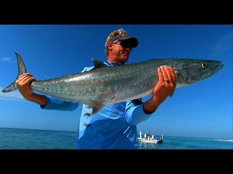 King Mackerel Fishing in Boca Grande Pass Florida