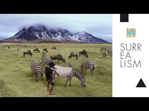 Photoshop manipulation animal repainting zebra