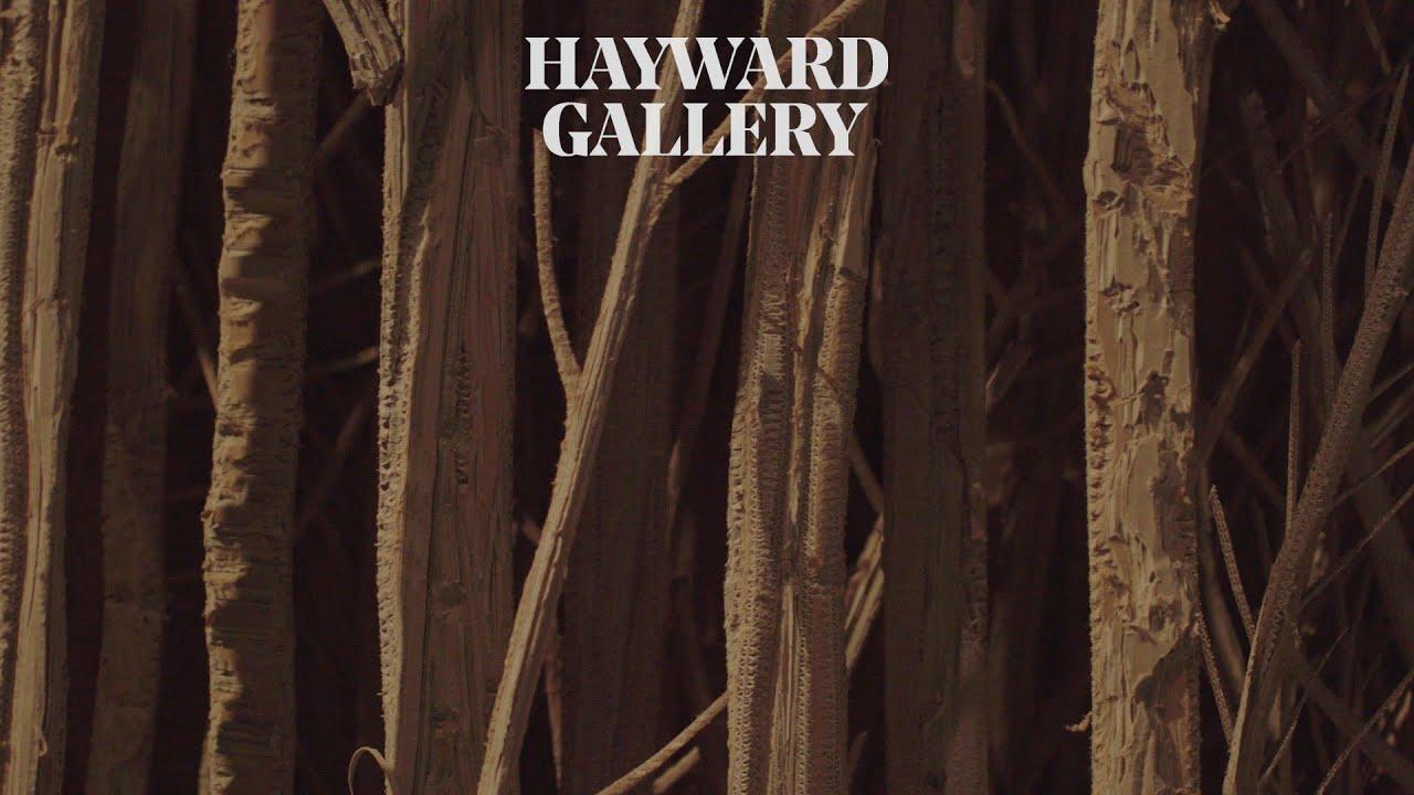 Among the Trees: Eva Jospin | Hayward Gallery