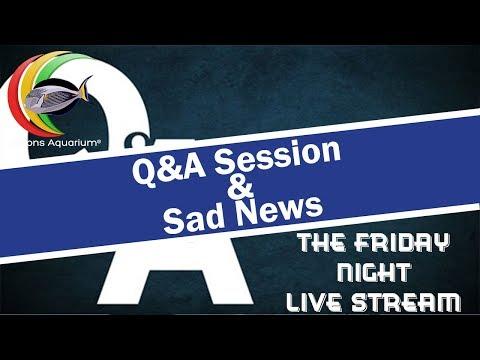 Q&A Session and Sad News
