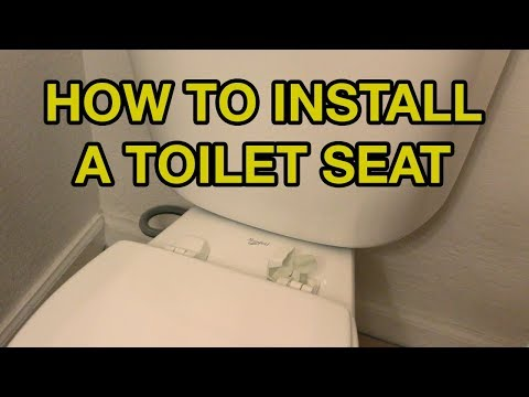 How To Replace Your Toilet Seat