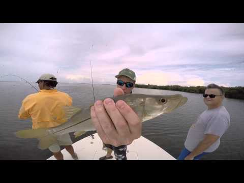 Catching redfish and snook in Tampa Bay with Capt. Carlos Boothby