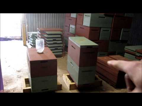 7 Frame Medium Langstroth Hives and Why.