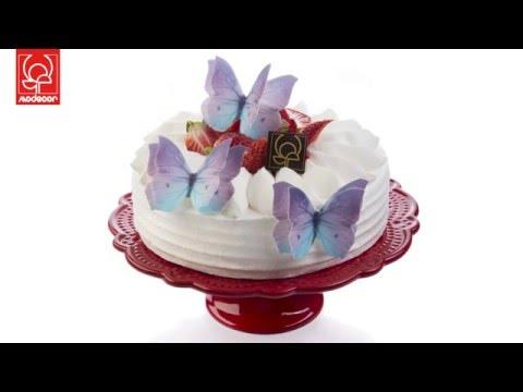 3D Wafer paper butterflies