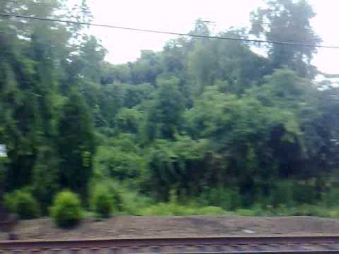 Train to New Jersey (thru CT)
