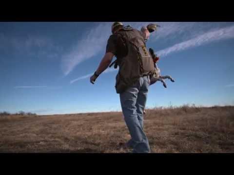 LandLeader TV - Episode 8 - Cattle, Horses and Coastal Ranch