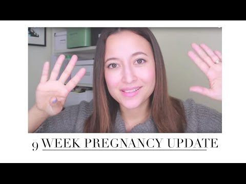 9 Week Update Traveling During First Trimester | Friedia