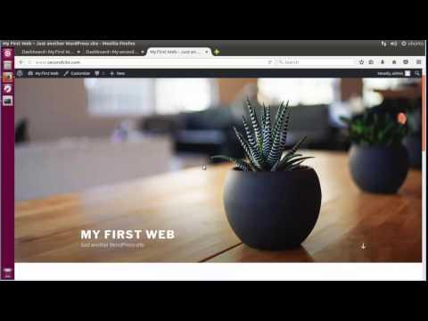 Deploy Multiple WordPress Sites on Single Host