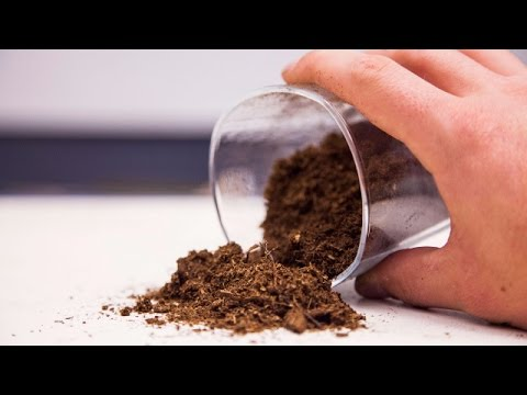 What is Peat Moss? I Pros and Cons