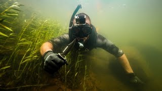 Exploring Bottom of RIVER for Lost Treasure!! (Fish touch)