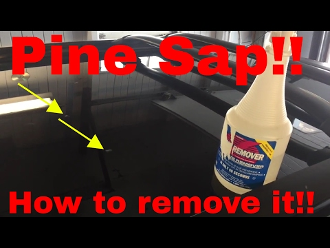 Tips on how to remove pine sap from your car or truck.