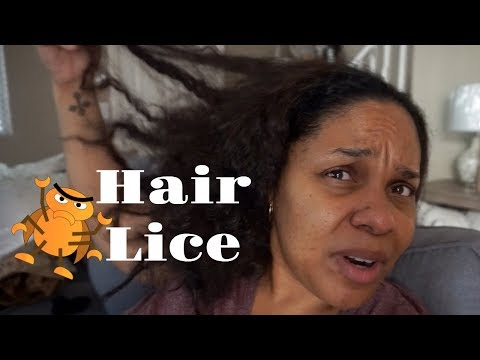 WHAT!!! HAIR LICE  |  VLOG |