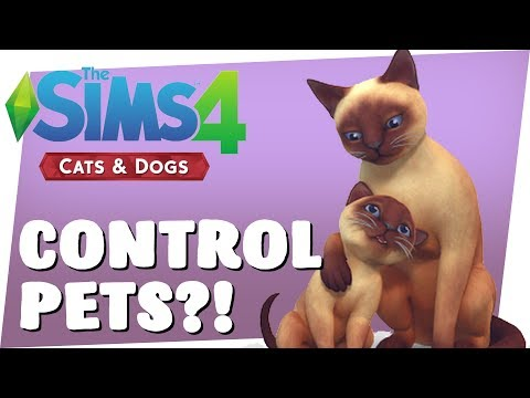 Sims 4 CATS & DOGS - CONTROLLING PETS! [Sims 4 Pets]