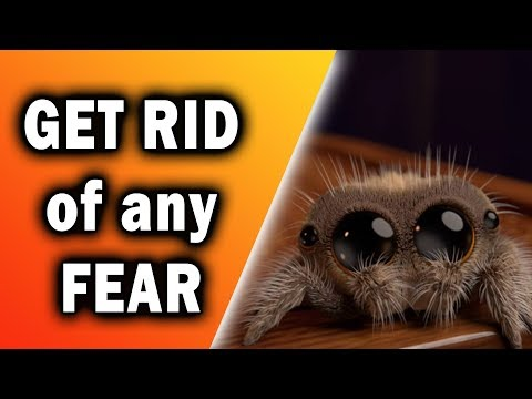 How to Get Rid of ANY Fear - Systematic Desensitization Explained