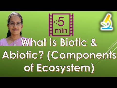 What is Biotic & Abiotic? (Components of Ecosystem)