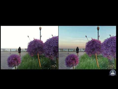 Improve Your Smartphone Photos With Snapseed
