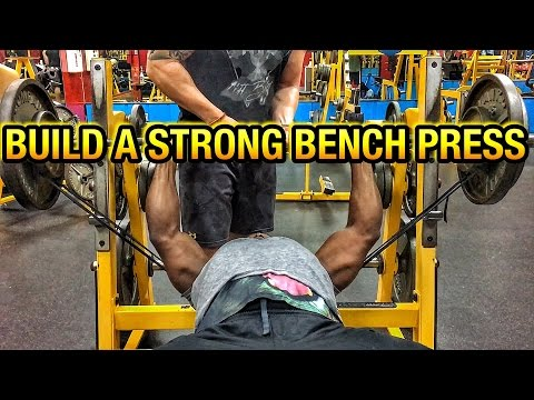 Building A Strong Bench Press| GAIN CERTIFIED